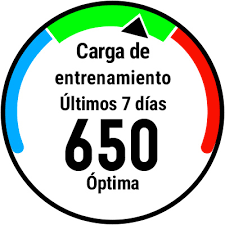 Nuevo Forerunner 935-images-png